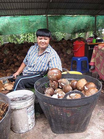 2.ชาวบ้านในละแวกโรงงานมารับจ้างปอกมะพร้าว